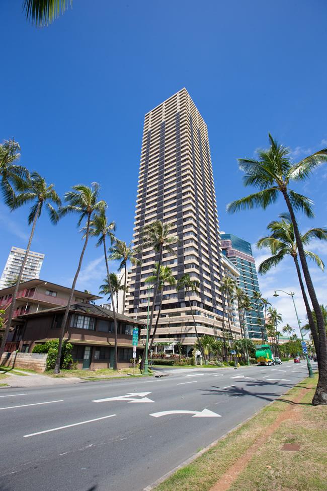 HawaiianMonarch13-01