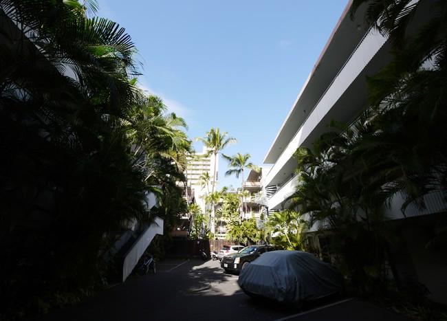 ハワイアンプリンス