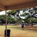 ハワイ 小学校
