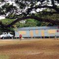 ハワイ 学校