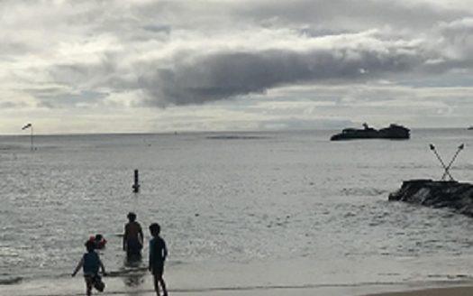 パシフィックパラダイス 沈没船 ハワイ