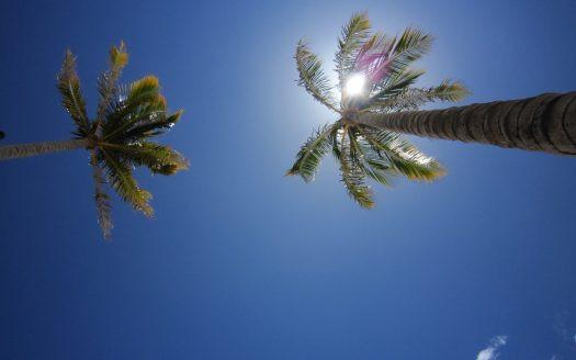 ハワイの祝日