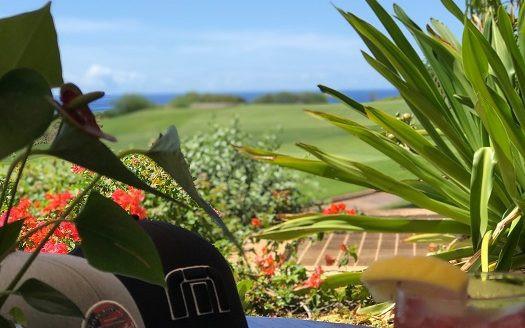 Views ビューズ ラナイ島 フォーシーズンズホテル
