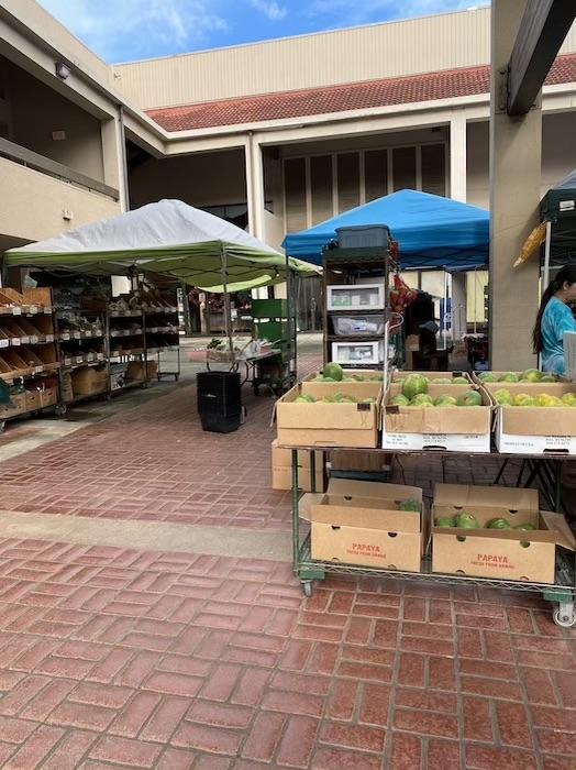 マノア ファーマーズマーケット ハワイ