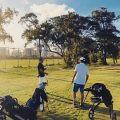 アラワイ ゴルフ