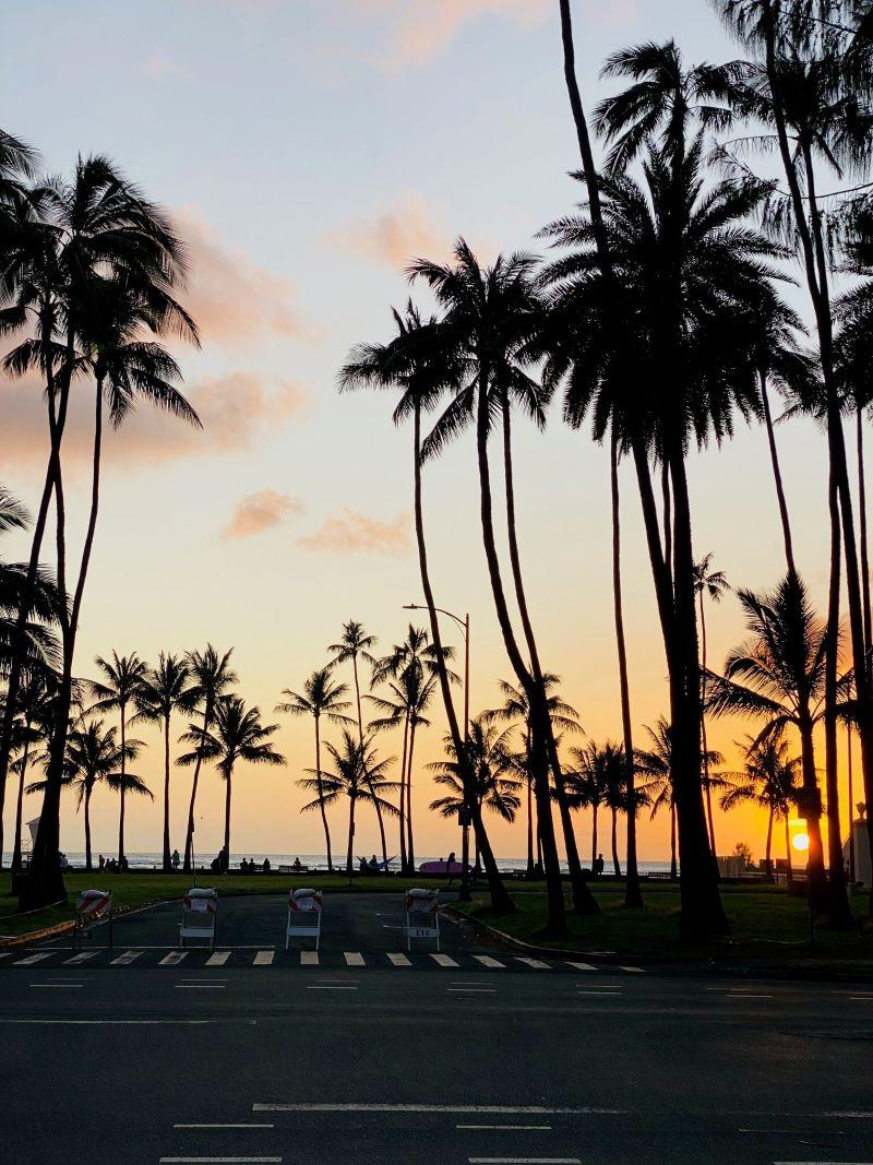 ハワイ コロナ 海