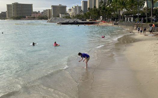 ワイキキ ビーチ ハワイ